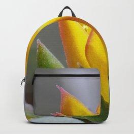 Firey succulent flower Backpack