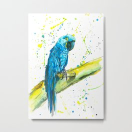 Parrot (Hyacinth Macaw) - Watercolor Painting Metal Print
