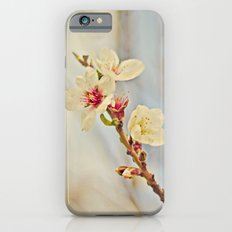Almond Blossoms in the Wind iPhone 6s Slim Case