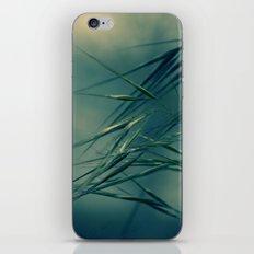 Magic wind iPhone & iPod Skin