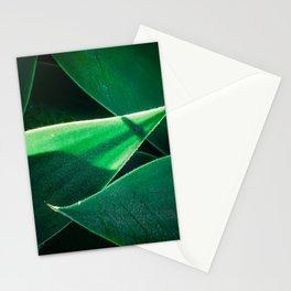 Light Shower Stationery Cards