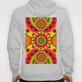 Psychedelic Visions G144 Hoody