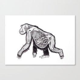 The Anatomy of a Pregnant Gorilla Canvas Print