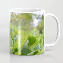 God morgen, vår Coffee Mug