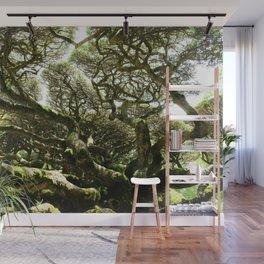Celestial Canopy Wall Mural
