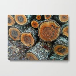 Wood Logs Metal Print