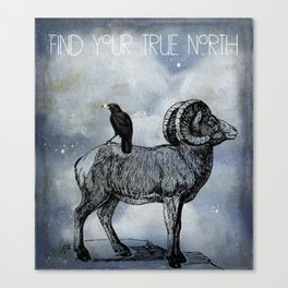 True North Big Horn Sheep And Crow Canvas Print