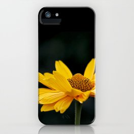 Bright Yellow And Black iPhone Case