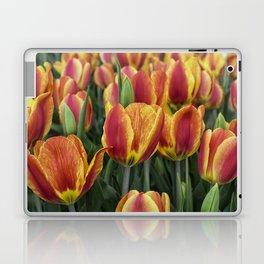 Orange Tulips on Cape Ann Laptop & iPad Skin