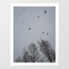 Winter Crows Art Print
