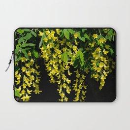 GOLDEN CHAIN TREE LABURNUM ALPINUM Laptop Sleeve