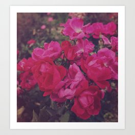 Faded Floral Art Print