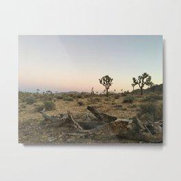 JOSHUA TREE XVI Metal Print