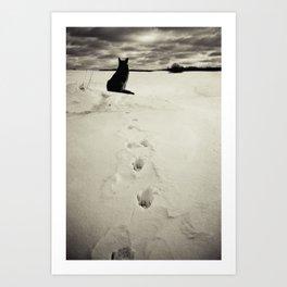 Winter landscape with dog  Art Print