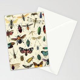 Lovely Butterfly Stationery Cards