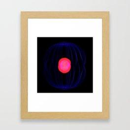 LV-1120 Framed Art Print