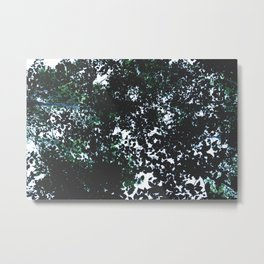 Tops of the leaves of trees silhouettes. Metal Print