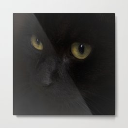 Black cat with yellow eyes Metal Print
