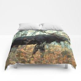 Huge Moose Comforters