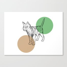 cat in the circle Canvas Print