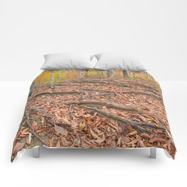 Autumn Avalon Forest Trail Comforters