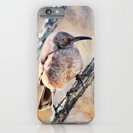 Desert Bird Morning Light-Barbara Chichester iPhone Case