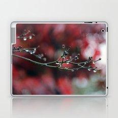November Rain and Acer Bokeh Laptop & iPad Skin