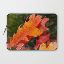 leaves in Autumn Laptop Sleeve