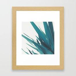 Yucca Leaves II Framed Art Print