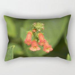 Kohleria from Bud to Bloom Rectangular Pillow