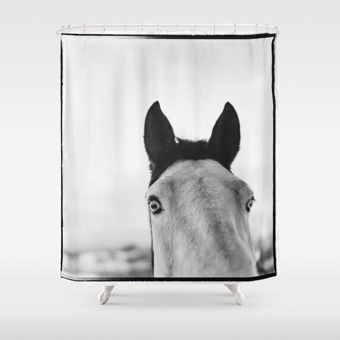 Equo 4 Shower Curtain