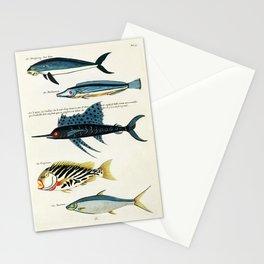 Antique Fish Louis Renard Vintage Scientific Illustration Species Labeled Diagram Encyclopedia Lithograph Stationery Cards