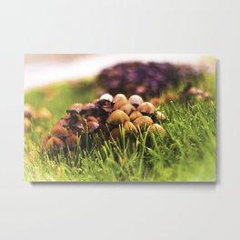 Mushroom Patch Metal Print