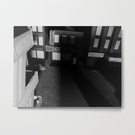 Hiding in the Shadows (2014) 1 Metal Print