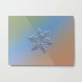 Real snowflake - 13 February 2017 - 5 Metal Print