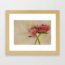Falling in Love with rose flowers Framed Art Print