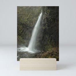 Upper Latourell Falls, No. 2 Mini Art Print