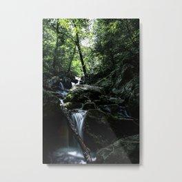 Blue Ridge Cascades Metal Print