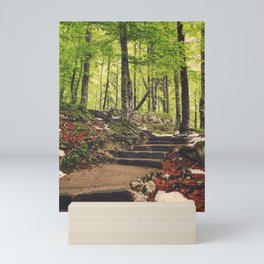 Path in the woods Mini Art Print