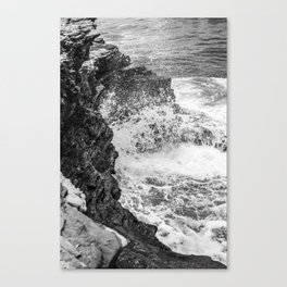 Cabrillo II Canvas Print