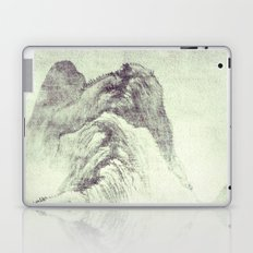 Looking back at Denjiro Laptop & iPad Skin