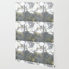 window scratch abstract Wallpaper
