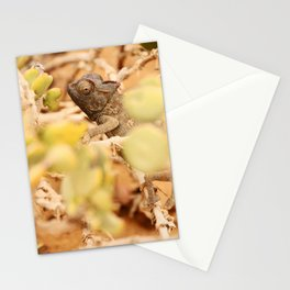 NAMIBIA ... the  chameleon Stationery Cards
