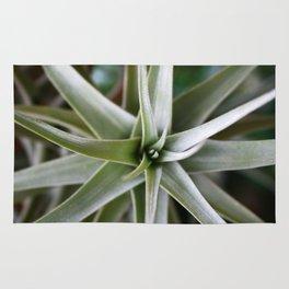 Plant Focus Rug