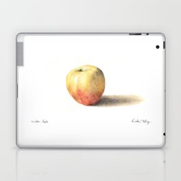 Winter Apple Laptop & iPad Skin