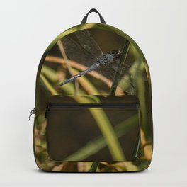 Dragonfly in the marsh Backpack
