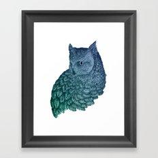 Ombre Owl II Framed Art Print