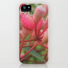Pink gumnut blossoms 2  iPhone Case