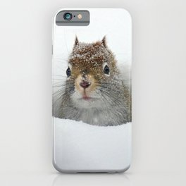 Cute Pop-up Squirrel in the Snow iPhone Case