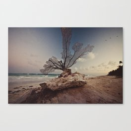 MEXICO Canvas Print